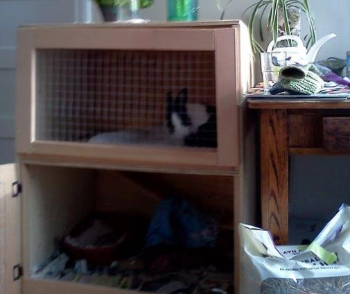 Rabbit Hutch Inside Your Home