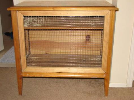 Turn Your End Table Into A Rabbit Hutch