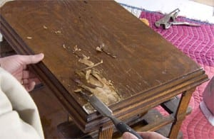 Assess The Condition Of The Veneer Panels 1