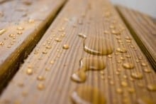 Can You Stain Wet Wood