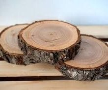 How To Dry Wood Slices Cut The