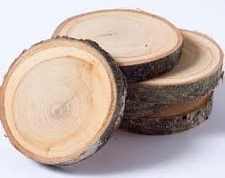 How To Dry Wood Slices In An Oven 1