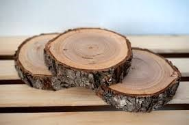 How To Dry Wood Slices