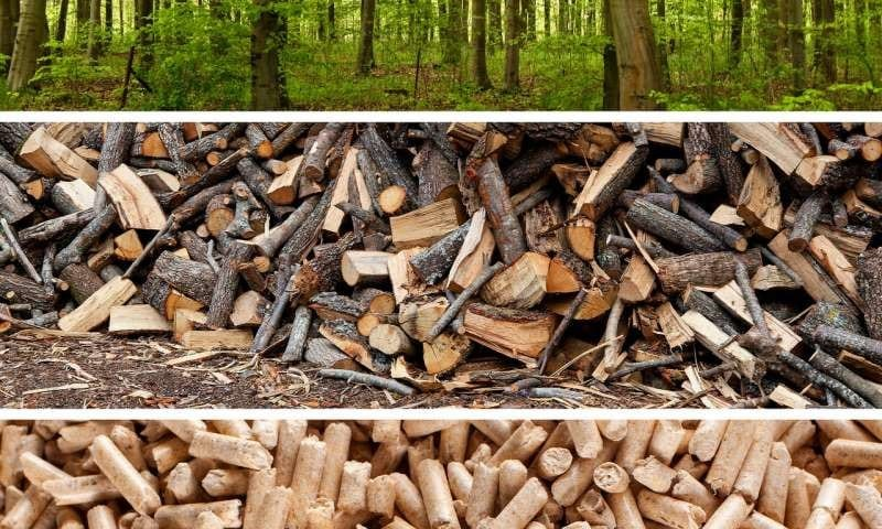 Is Wood A Fossil Fuel