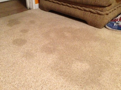 Remove Old Furniture Stains From Carpet