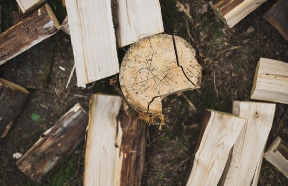 Select The Best Wood For Whittling