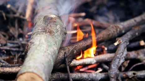 Step 2 Find Dry Wood And Set The Fire