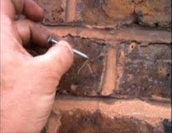 Using Nails Step 1