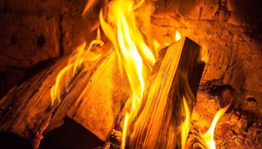 What Wood Is Toxic To Burn