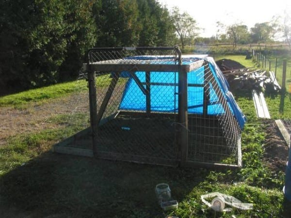 From Scrap To Chicken Tractor