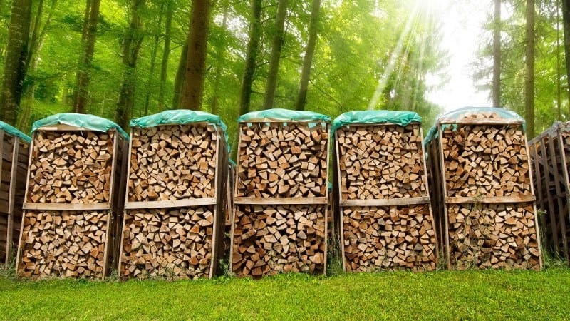 How Long Does It Take For Wood To Dry