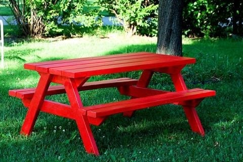 The Picnic Table For Adults