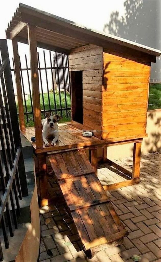 Elevated Dog House With Ramp