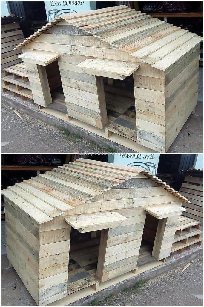 Pallet Double Dog House