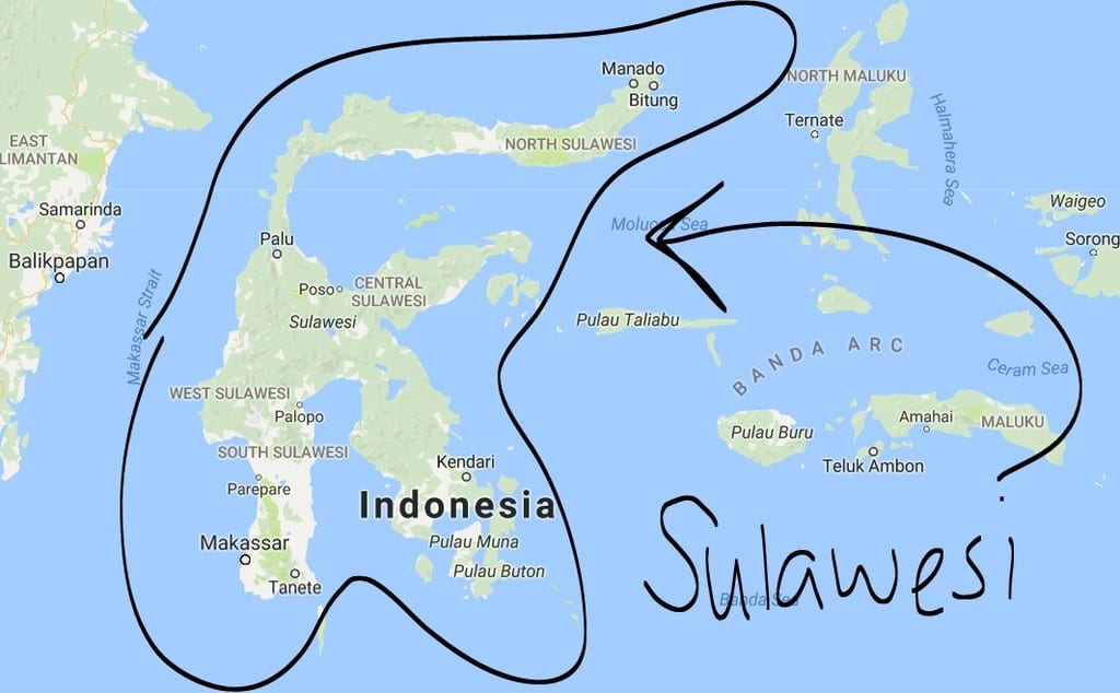 Sulawesi Is Home To More Than 70 Species Of Freshwater Fish