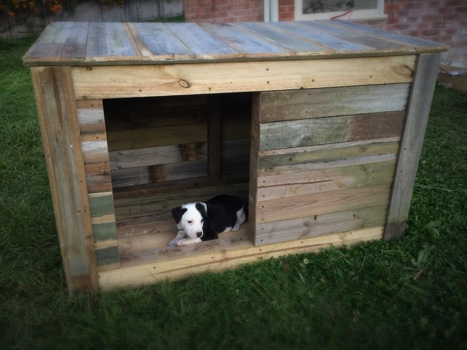 Wide Opening Pallet Dog House