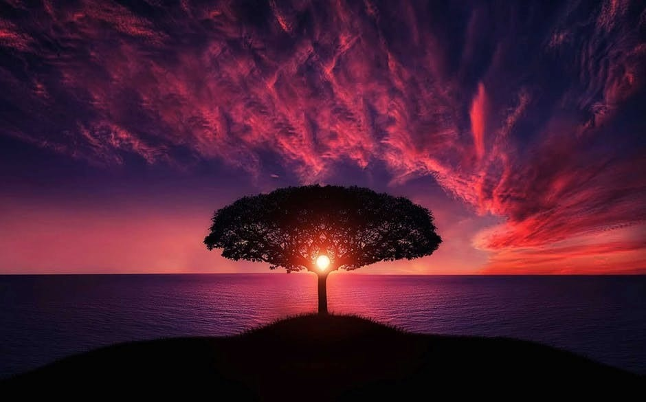 Tree Of Life The Ancient Symbol Of The Universe
